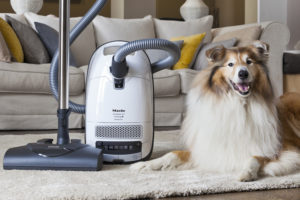 Miele Classic C1 Cat and Dog Red (Canada) Review, C2 Comparison