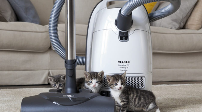 Comparison Review Miele Complete C3 Cat Dog Vs Kona Which Canister Vacuum Is Better For Pets And High Pile Carpets