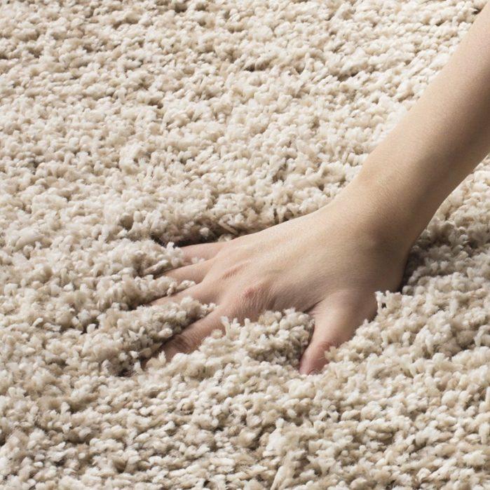 Petmycarpet Frieze Twist Carpet Rug Guide Faq Pet My Carpet