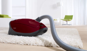 We can't think of a better carpet-specific vacuum cleaner than the Miele Soft Carpet.